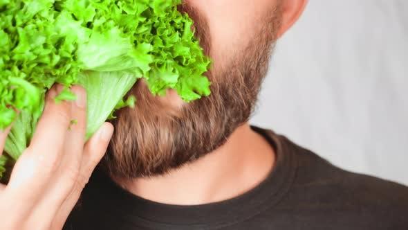 Thumbnail for Close Up Face Handsome Man Eating Leaf Vegetable