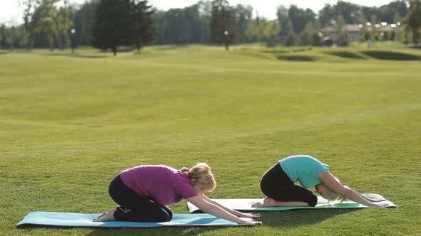 Thumbnail for Sporty Women Performing Yoga Exercises Outdoors