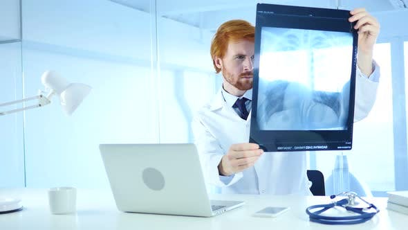 Thumbnail for Doctor Examining X-ray of Patient, Lungs and ribcage