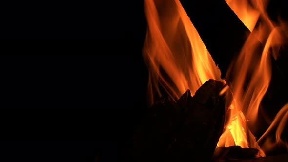 Thumbnail for Wood Fire Burn On Black Background