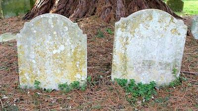 Graves Under Tree