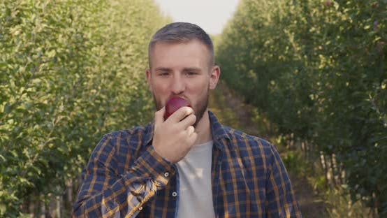 Outdoor Portrait of Young Man Biting Fresh Apple, Enjoying Natural Taste in Garden