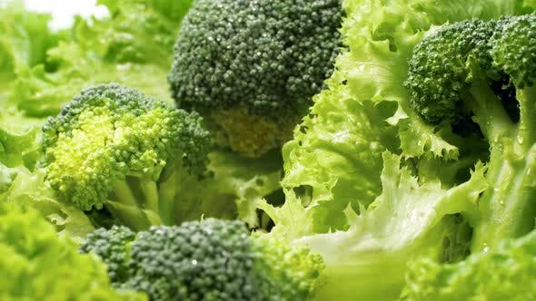 Thumbnail for Macro Dolly Video of Fresh Green Lettuce Leaves, Broccoli and Cabbage. Concept of Healthy Nutrition