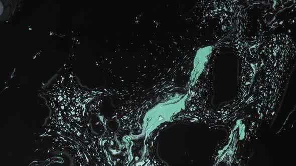 Thumbnail for Fluid Art Black Biscay Green Paint Mix Motion