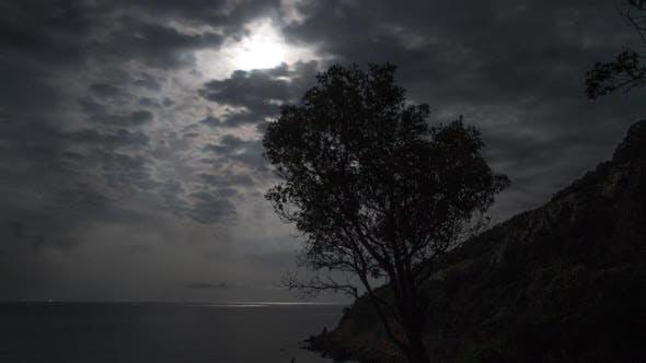 Thumbnail for Sicily beach night stars tree full moon sea