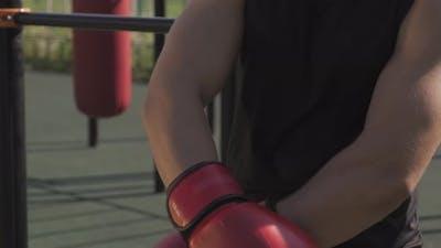 Sportsman Wearing Boxing Gloves