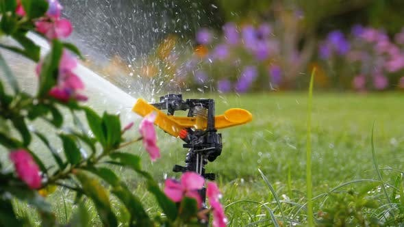 Thumbnail for Automatic Lawn Sprinkler on the Garden with Green Grass in Slow Motion