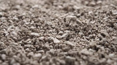 Clean clumping litter for pets and domestic animals