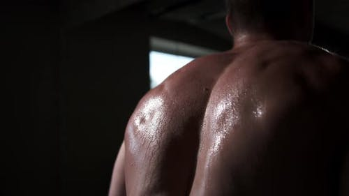 A man in the gym does an exercise by straining his back muscles. Beautiful male body