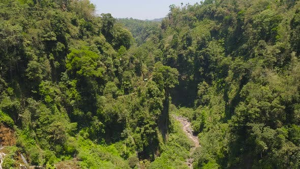 Thumbnail for Tropical Landscape Rainforest and Waterfall