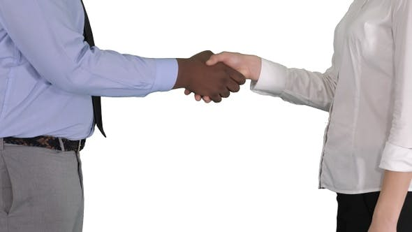 Thumbnail for Hands of businessman and businesswoman handshaking on white