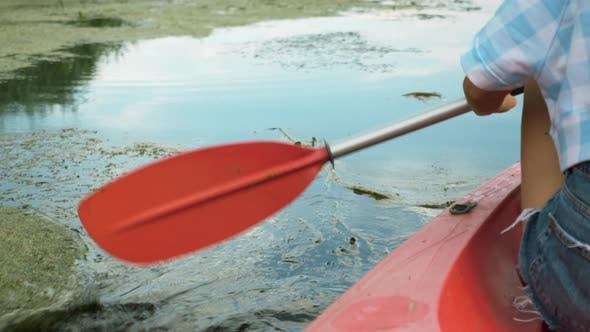 Thumbnail for Kayak oar is paddling in water. Paddle is clinging to seaweed in calm river water.