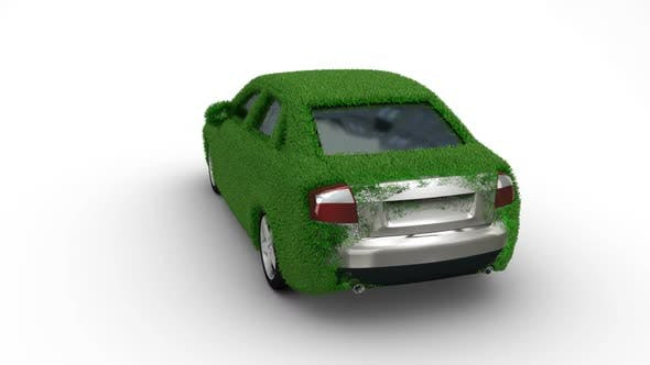 Thumbnail for Car Grass Grow