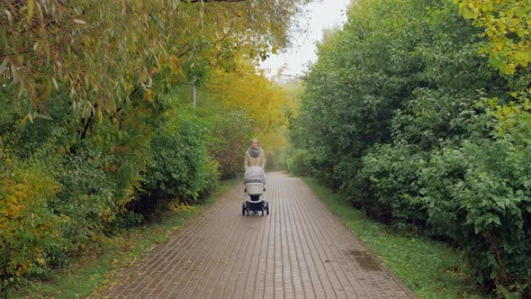 Thumbnail for Mum Walking with Baby Walking in Autumn Park
