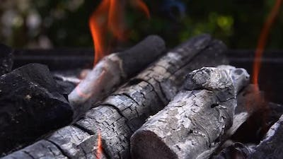 Coal Fire And Ashes For Barbecue