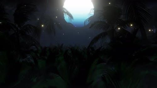 Summer Palm Tree On The Beach 03 4 K