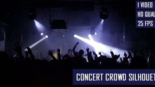 Thumbnail for Concert Crowd Silhouette