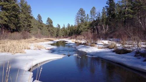 River or Stream Black Hills in Winter in South Dakota United States