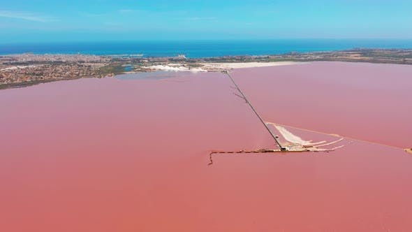 Panoramic Aerial View Video of Las Salinas, Bright Color Famous Place Pink Lake