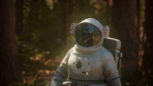 Thumbnail for Lonely Astronaut in Dark Forest