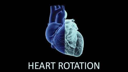 Heart Rotation (3-Pack)