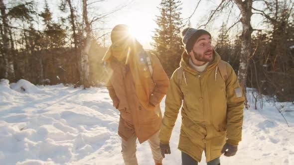 Thumbnail for Male Friends Walking In Woods In Winter