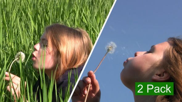 Thumbnail for Girl And Dandelion (2-Pack)