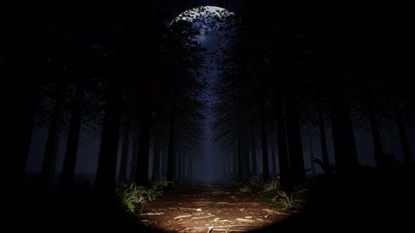 Deep In The Rainforest 03 4K