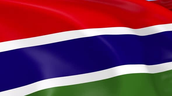 Thumbnail for Gambia Flag