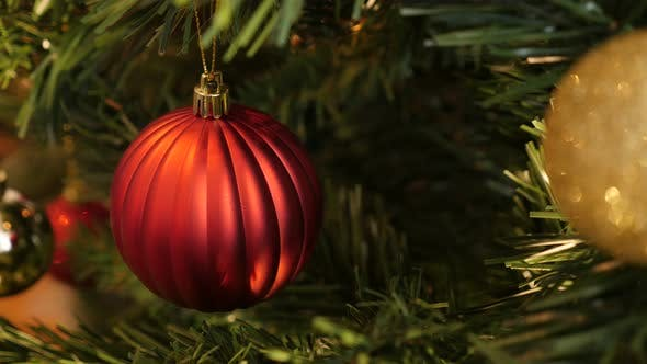 Bauble hidden on the branch 4K 2160p 30fps UltraHD footage - Decorative ornament hanged on Christmas