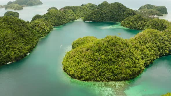 Thumbnail for Aerial View of Sugba Lagoon, Siargao,Philippines.