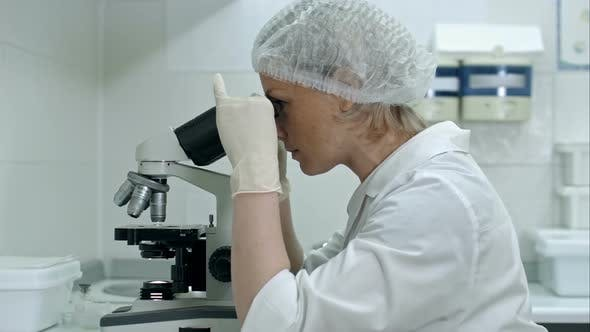 Thumbnail for Beautiful Woman in a Laboratory Working with a Microscope