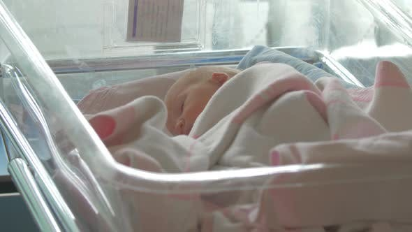 Thumbnail for A Newborn Baby Girl Lying Awake in a Hospital Baby Cart