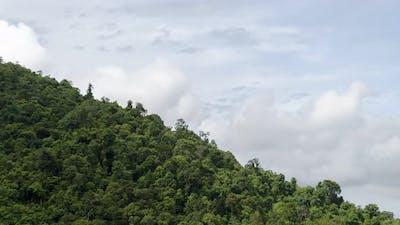 Timelapse sunshine day at tropical rainforest