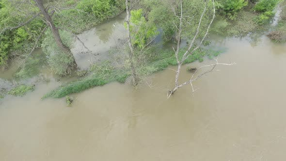 Thumbnail for Trees under water after heavy raining and flooding 4K drone video