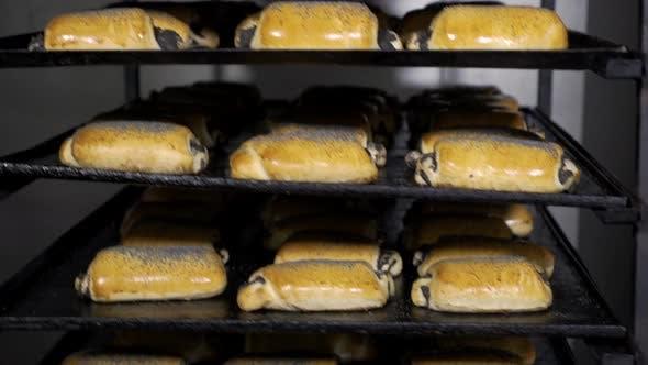 Thumbnail for Brotlaib auf der Produktionslinie in der Bäckerei. Gebackener Laib Brot in der Bäckerei, gerade aus