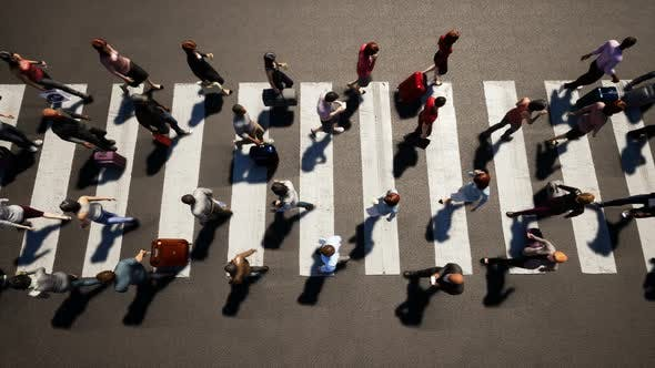 Thumbnail for 4K People Walking Over Crosswalk