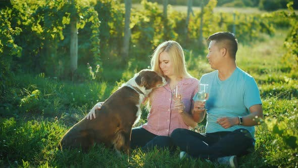 Thumbnail for A Young Couple Tasting Wine, Next To Them Is Their Dog. Good Time with Pet