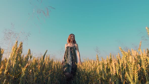 Thumbnail for Woman Walking on a Field of Golden Wheat at Sunset Facing the Camera. A Woman Smiling and Touching
