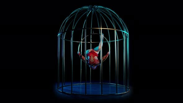 Thumbnail for Girl Art Acrobatics in the Twine Hangs on a Hoop in a Cage