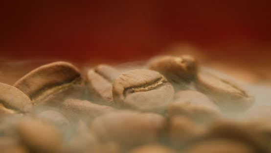Thumbnail for Close Up of Seeds of Coffee
