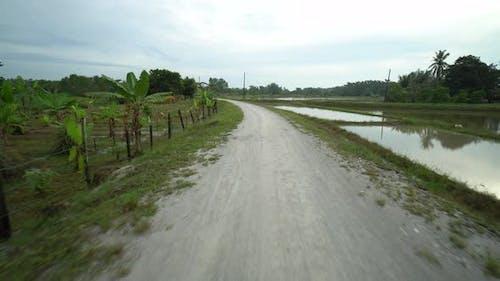 Drive at Malays kampung road banana plantation