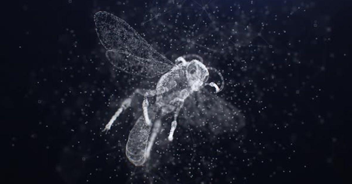 Plexus Bee