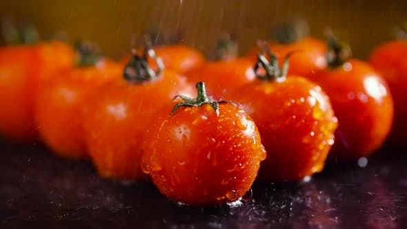 Thumbnail for Tomatoes With Drops of Water Macro Video, Beautiful Macro Video, Raw Organic Food Vegetables