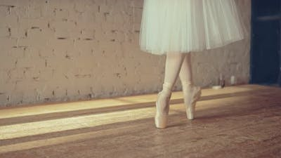 Ballet Exercises in Pointe