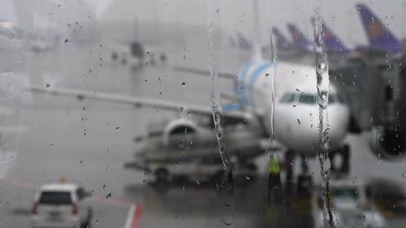 Cover Image for Tropical Rain in the Airport