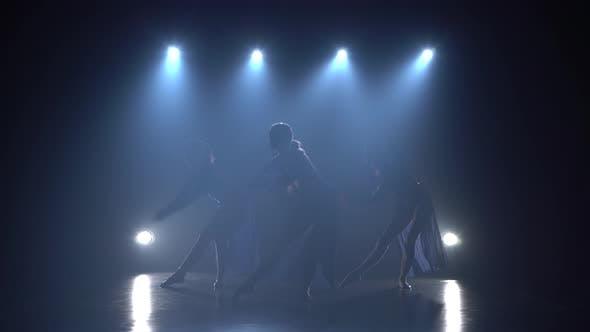 Thumbnail for Young Ballerinas Dancing in Haze of Studio.