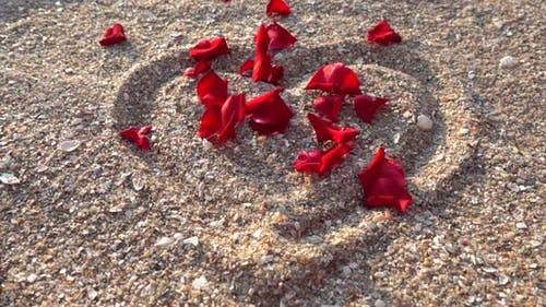 Rose petals in the drawing of a heart on the sand.