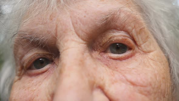 Thumbnail for Portrait of Old Grandmother Looking at Camera. Close Up Eyes of an Elderly Woman with Wrinkles