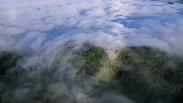 Aerial View Of Clouds Coverage Rolling Over The Forest Terrain in La Palma island